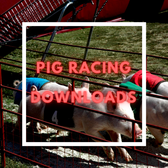 Cheap Race Night Downloads UK Horse Pig Racing Fundraising Packages